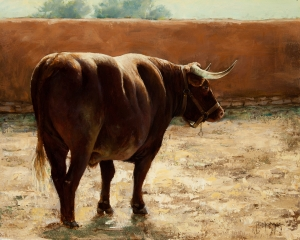 Ox at the Fort